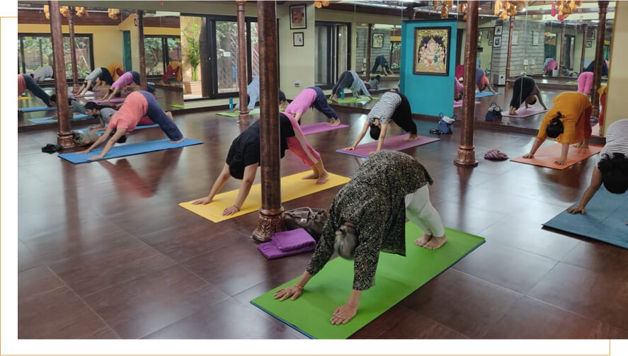 Adho Mukha Svanasana streches almost every part of the body done during our exclusive yoga classes for ladies